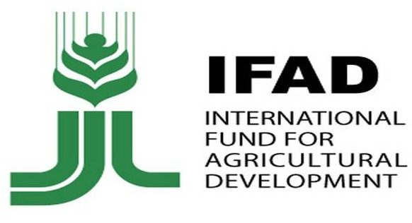 IFAD-VCDP hands over shops, stalls to benefiting Ebonyi communities