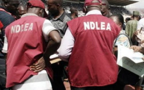 NDLEA Nabs Suspected Hard Currency Smugglers